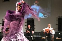 flamenco (6)